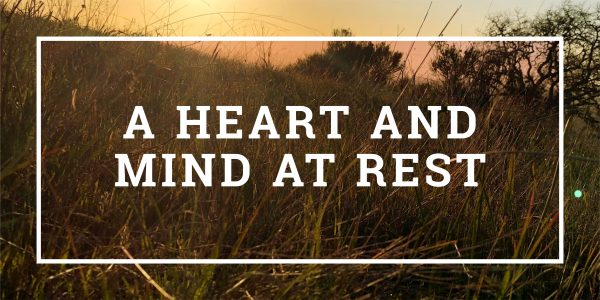 A Heart and Mind At Rest